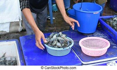 Shrimp in thai street food market