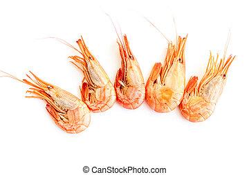 Shrimp isolated on white background.