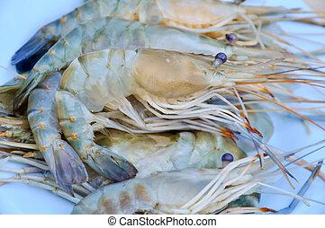 Shrimp - fresh shrimp from the farm for cooking.