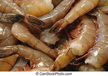Shrimp on ice.