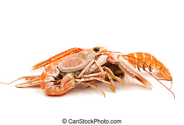 shrimp with pincers