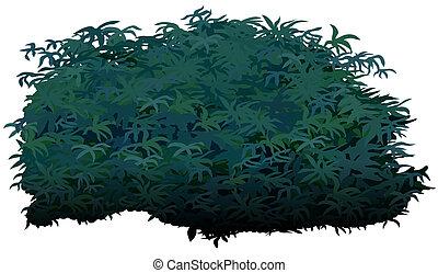 Shrub - Cartoon Plant, Vector Illustration