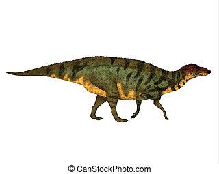 Shuangmiaosaurus Side Profile