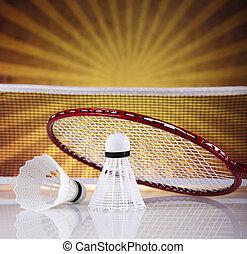 Shuttlecock on badminton racket