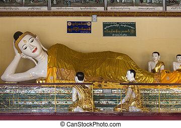 shwedagon, myanmar, -, pagode, complexe, yangon
