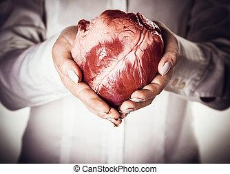 siła robocza, serce