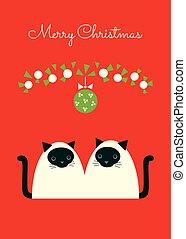 siamese cats under mistletoe