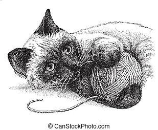 siamese kat, spelend