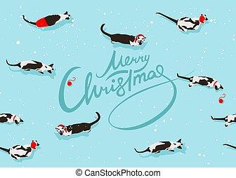 siamese, padrão, gato, feliz, ano, novo, natal