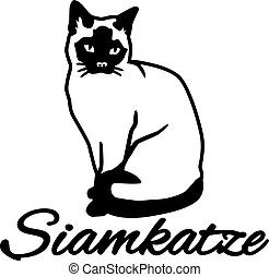 siamois, allemand, nom, chat