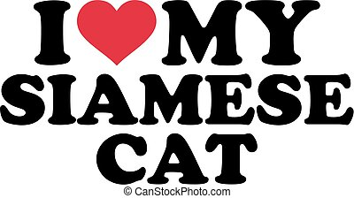 siamois, amour, mon, chat