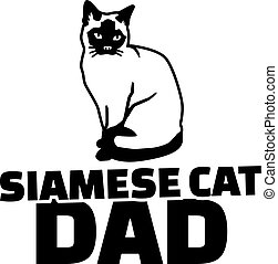 siamois, papa, chat