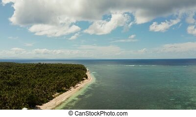 Siargao island and ocean, aerial view. - Seascape: coast of...