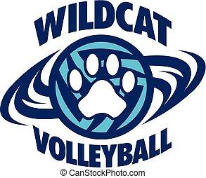 siatkówka, wildcat