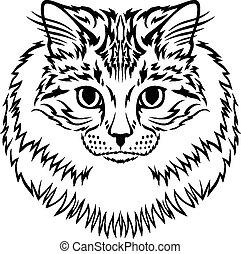 Siberian furry cat muzzle