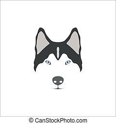 Siberian Husky head.
