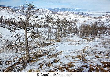 Siberian landscape near lake Baikal.