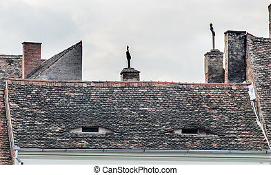 SIBIU, ROMANIA - AUGUST 10, 2016: Detail of houses situated near downtown of the city. Roof with eye windows.
