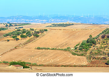 sicile, campagne, italy.