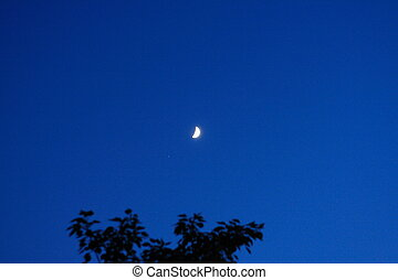 sickle moon on sky at night