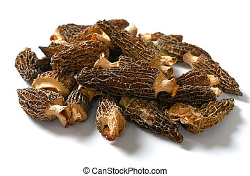 side view morel on a white background