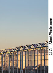 Side view of a Dutch greenhouse