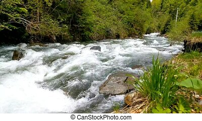 Side view of a fast mountain river. Nature