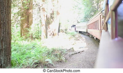 Side view of an old fashioned train, handheld