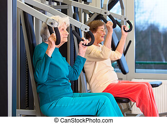 Healthy Elderly Ladies in Chest Press Exercise