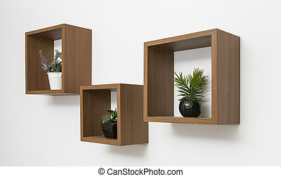 Side view of wooden shelves set on white wall with indoor plants pots