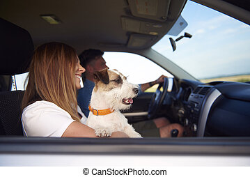 Side view of young couple and dog traveling by car