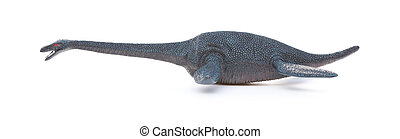 side view plesiosaurus on a white background
