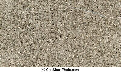 Sidewalk Concrete Texture