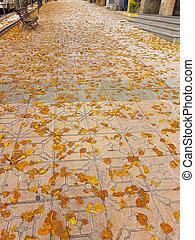 Sidewalk full of leaves in autumn
