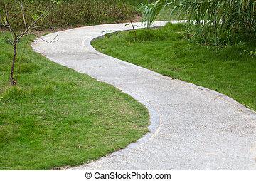 Sidewalk - Lawn, reed,small tree, and curved sidewalk around...