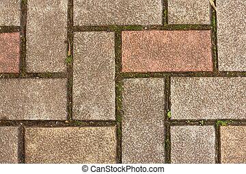 Sidewalk of concrete blocks