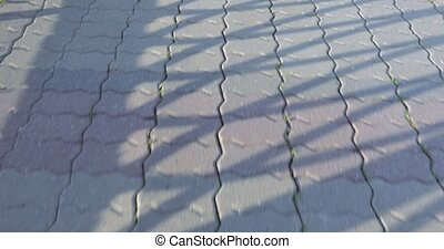 Sidewalk tile and shadow - In the shadow of the paving tile...