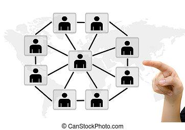 sieć, handlowy zaludniają, komunikacja, rzutki, młody, whiteboard., towarzyski