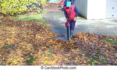 sien, arrière-cour, homme, souffler, garage, feuilles, maison