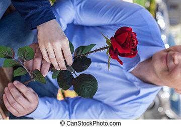 sien, donner, rose, couple, haut, jeune, park., séduisant, fin, petite amie, portrait, homme souriant