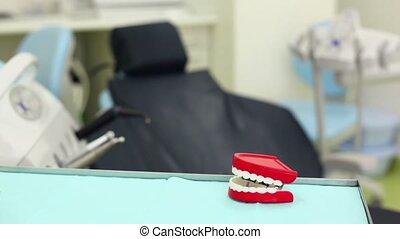 sien, grand, dentaire, dents, knacks, jouet, mâchoire, table...