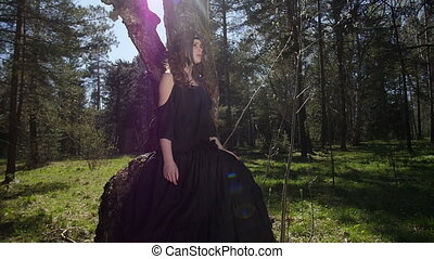 sien, soleil, arbre, dos, girl, assied