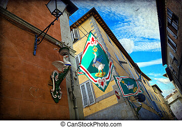 Siena - Contrada dell 'Oca flag