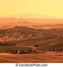 Siena, rolling hills on sunset. Rural landscape with cypress...