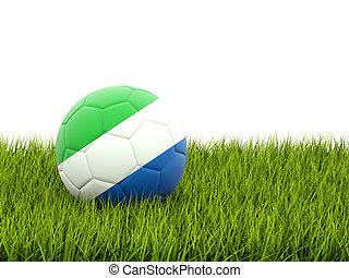 sierra, de voetbal van de vlag, leone