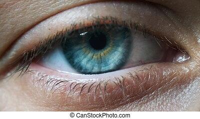 sight., détail, fille, oeil bleu, jeune, oeil, extrême, ...