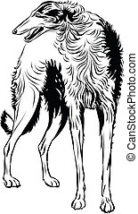 Sighthound, dog,line art ready for your design work or...