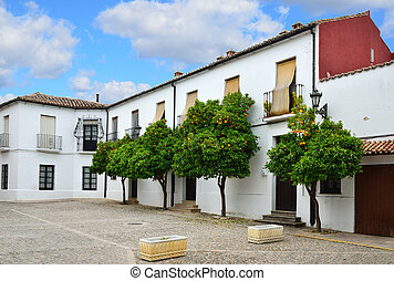 Sights of the ancient Spanish town Ronda