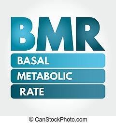 siglas, bmr, -, metabolic, tasa, basal