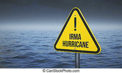 Sign Irma hurricane immersed in water